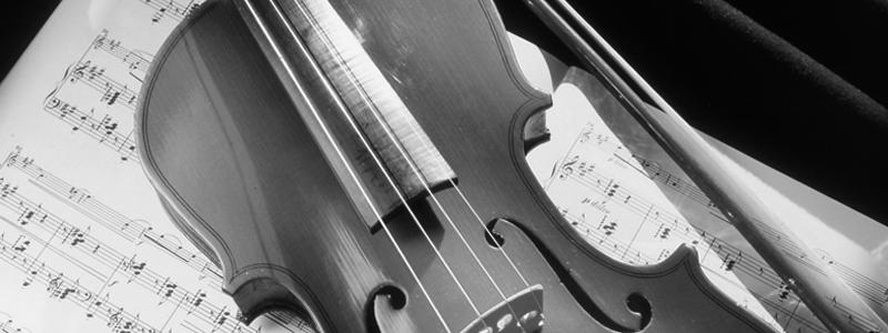 Live-Musik für Firmenfeiern, Feste und Hochzeiten
